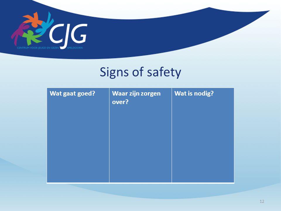 Signs of safety Wat gaat goed?Waar zijn zorgen over? Wat is nodig? 12