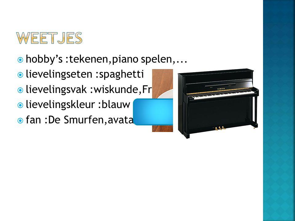  hobby's :tekenen,piano spelen,...  lievelingseten :spaghetti  lievelingsvak :wiskunde,Frans,…  lievelingskleur :blauw  fan :De Smurfen,avatar,..