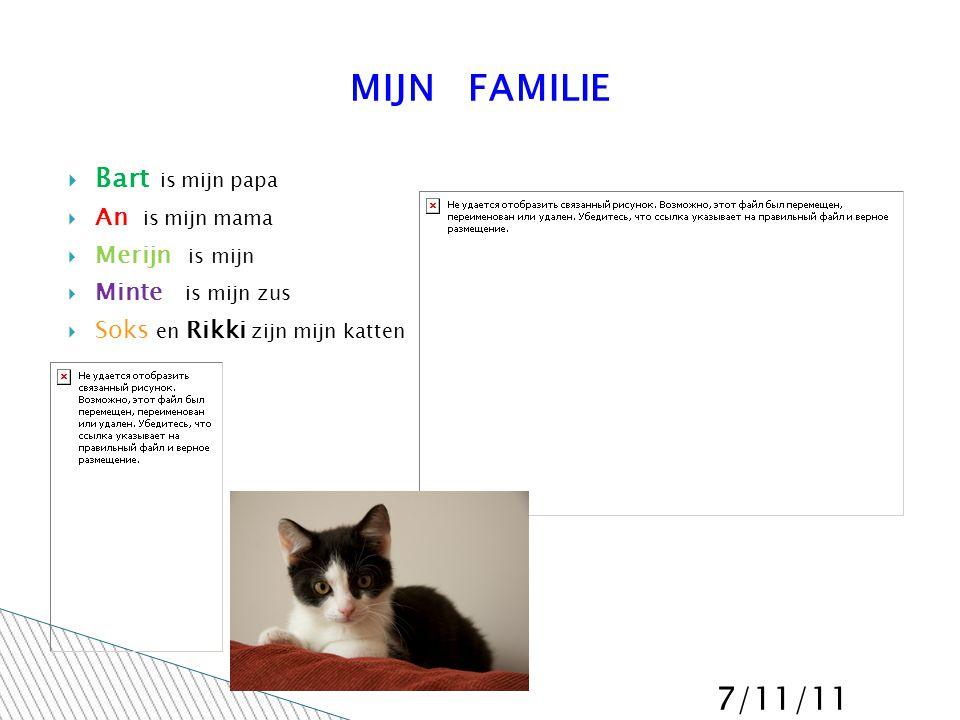 7/11/11 MIJN FAMILIE  Bart is mijn papa  An is mijn mama  Merijn is mijn  Minte is mijn zus  Soks en Rikki zijn mijn katten