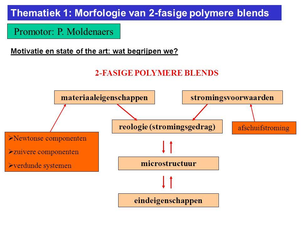 2-FASIGE POLYMERE BLENDS Thematiek 1: Morfologie van 2-fasige polymere blends Promotor: P.