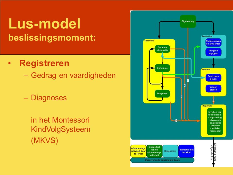 Lus-model beslissingsmoment: Registreren –Gedrag en vaardigheden –Diagnoses in het Montessori KindVolgSysteem (MKVS)
