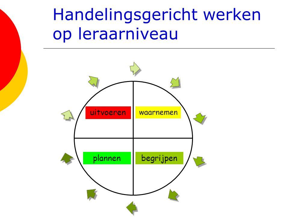 Handelingsgericht werken op leraarniveau waarnemen begrijpenplannen uitvoeren