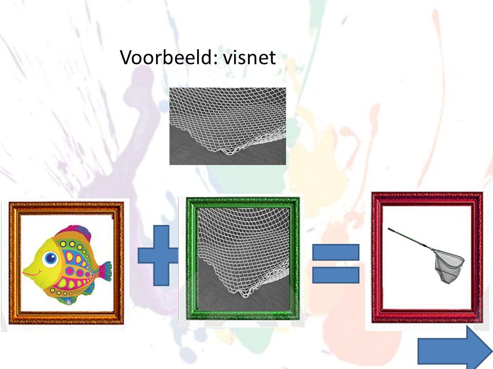 Voorbeeld: visnet