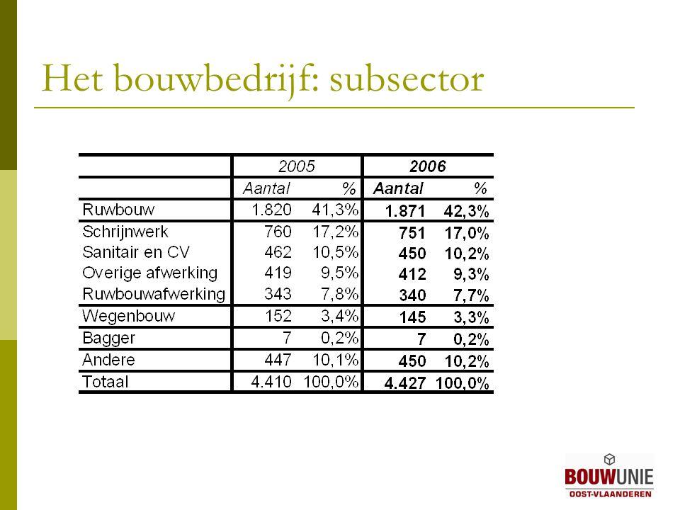 Het bouwbedrijf: subsector