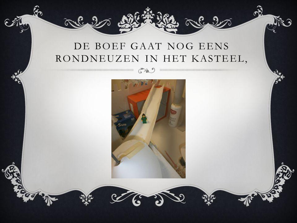 DE BOEF GAAT NOG EENS RONDNEUZEN IN HET KASTEEL,