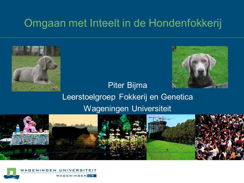 Omgaan met Inteelt in de Hondenfokkerij Piter Bijma Leerstoelgroep Fokkerij en Genetica Wageningen Universiteit
