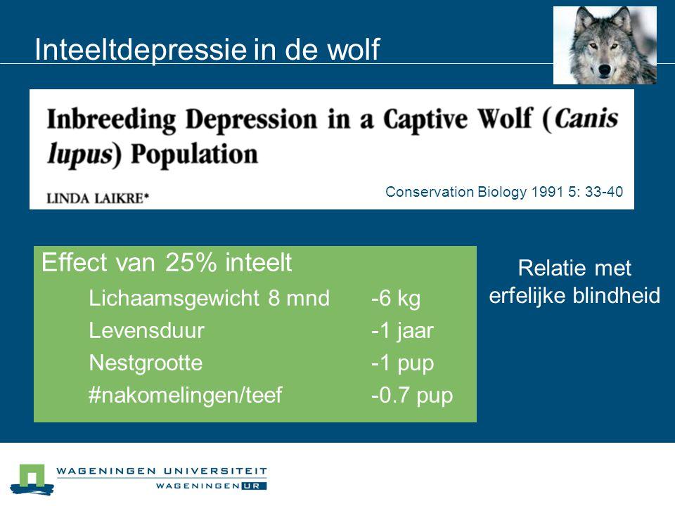 Inteeltdepressie in de wolf Effect van 25% inteelt Lichaamsgewicht 8 mnd-6 kg Levensduur-1 jaar Nestgrootte-1 pup #nakomelingen/teef-0.7 pup Conservat
