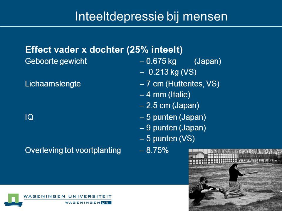 Effect vader x dochter (25% inteelt) Geboorte gewicht – 0.675 kg(Japan) – 0.213 kg (VS) Lichaamslengte – 7 cm (Hutterites, VS) – 4 mm (Italie) – 2.5 c