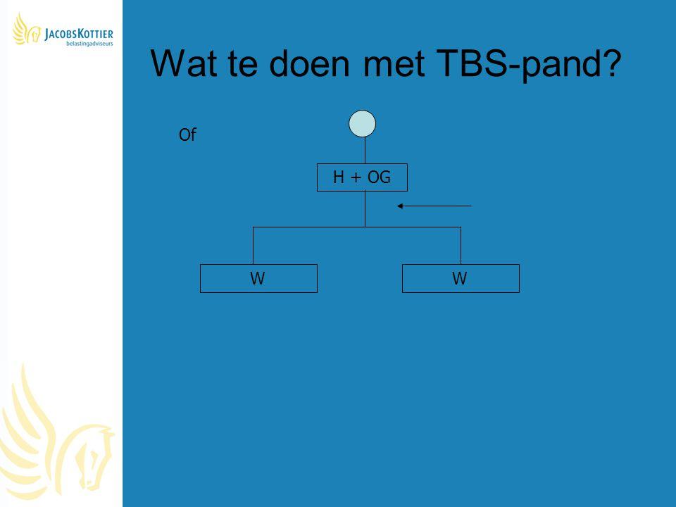 Wat te doen met TBS-pand? H + OG WW Of