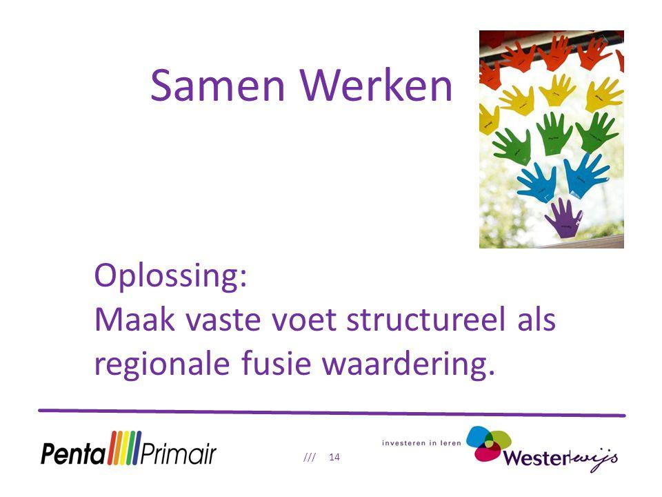 Samen Werken /// 14 Oplossing: Maak vaste voet structureel als regionale fusie waardering.