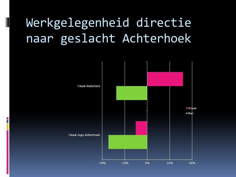 Werkgelegenheid directie naar geslacht Achterhoek