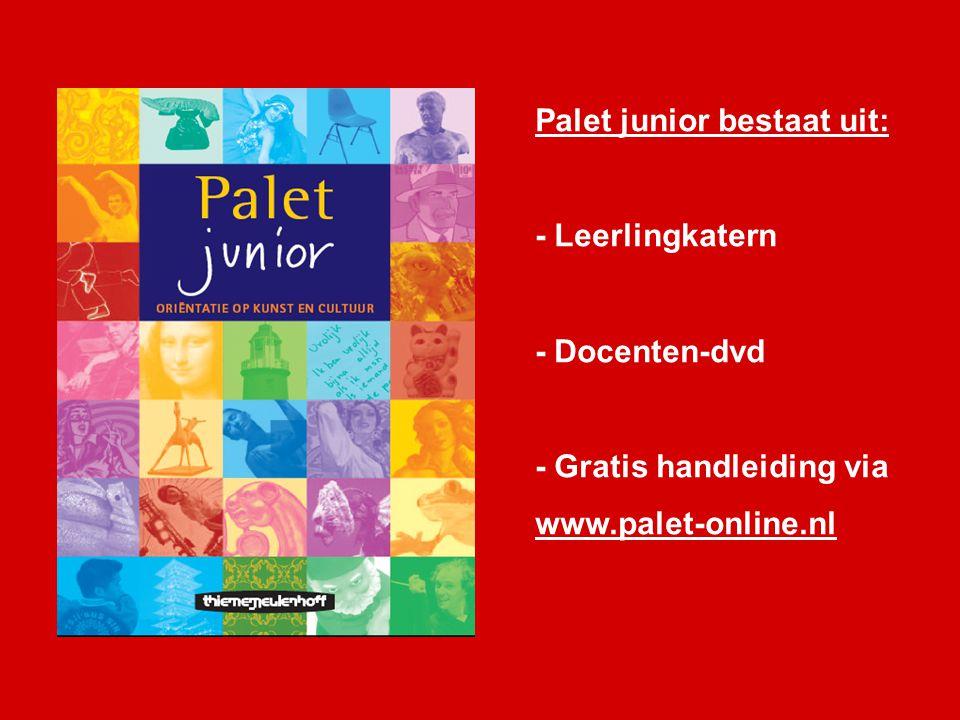 Palet junior bestaat uit: - Leerlingkatern - Docenten-dvd - Gratis handleiding via www.palet-online.nl