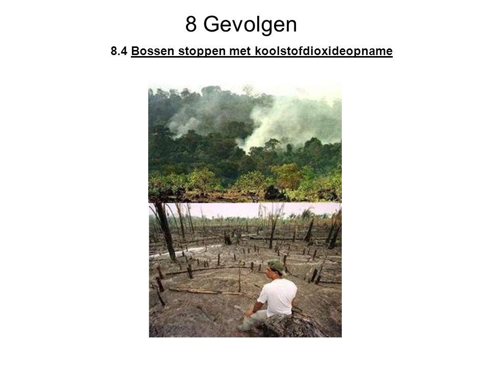 8 Gevolgen 8.4 Bossen stoppen met koolstofdioxideopname