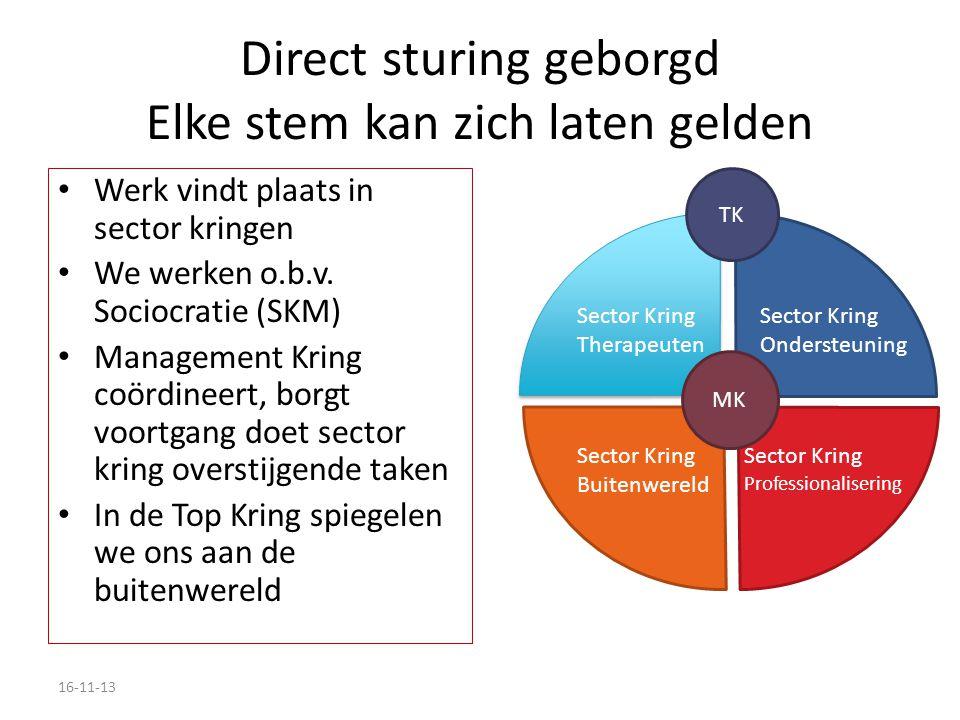 Direct sturing geborgd Elke stem kan zich laten gelden Werk vindt plaats in sector kringen We werken o.b.v.