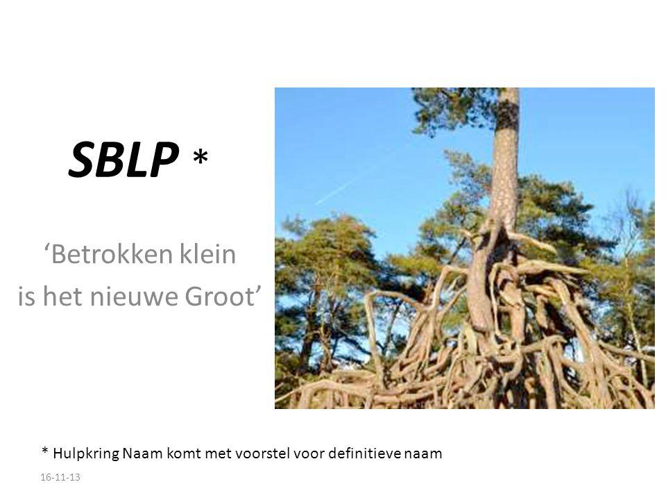 SBLP * 'Betrokken klein is het nieuwe Groot' * Hulpkring Naam komt met voorstel voor definitieve naam 16-11-13