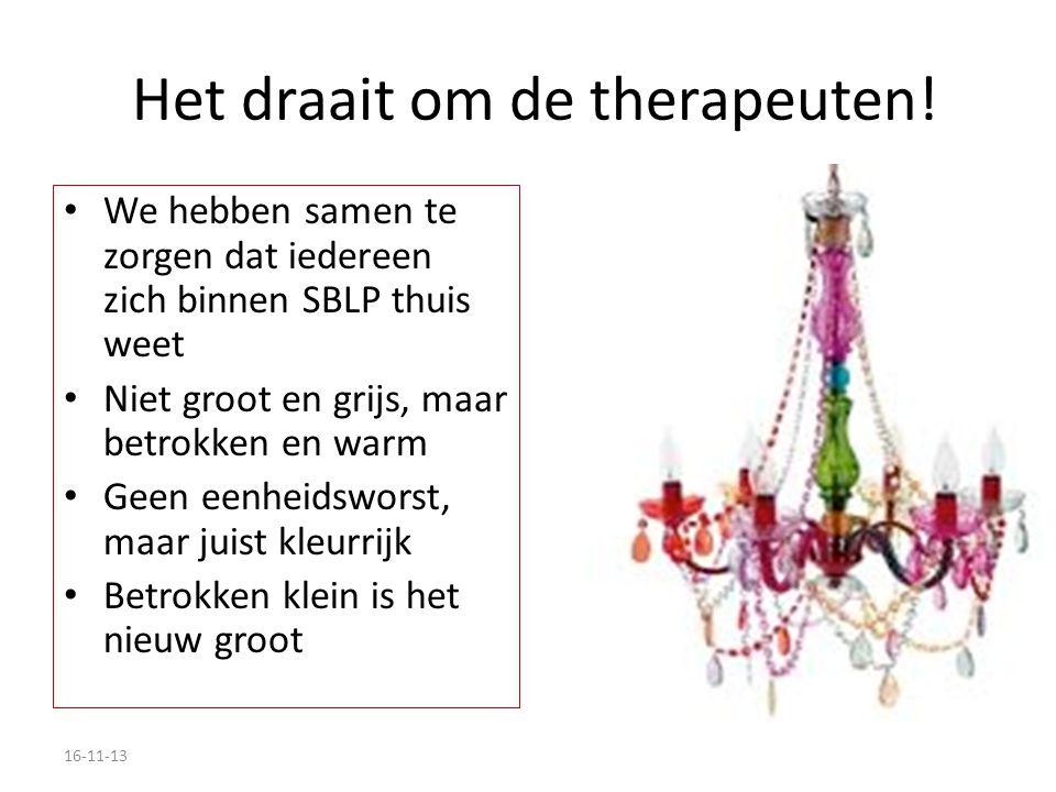 Sector Kring Therapeuten Bij de start heeft elke 'werkwijze' zijn eigen Kring: – Bioenergetische Analyse – Postural Integration e.a.