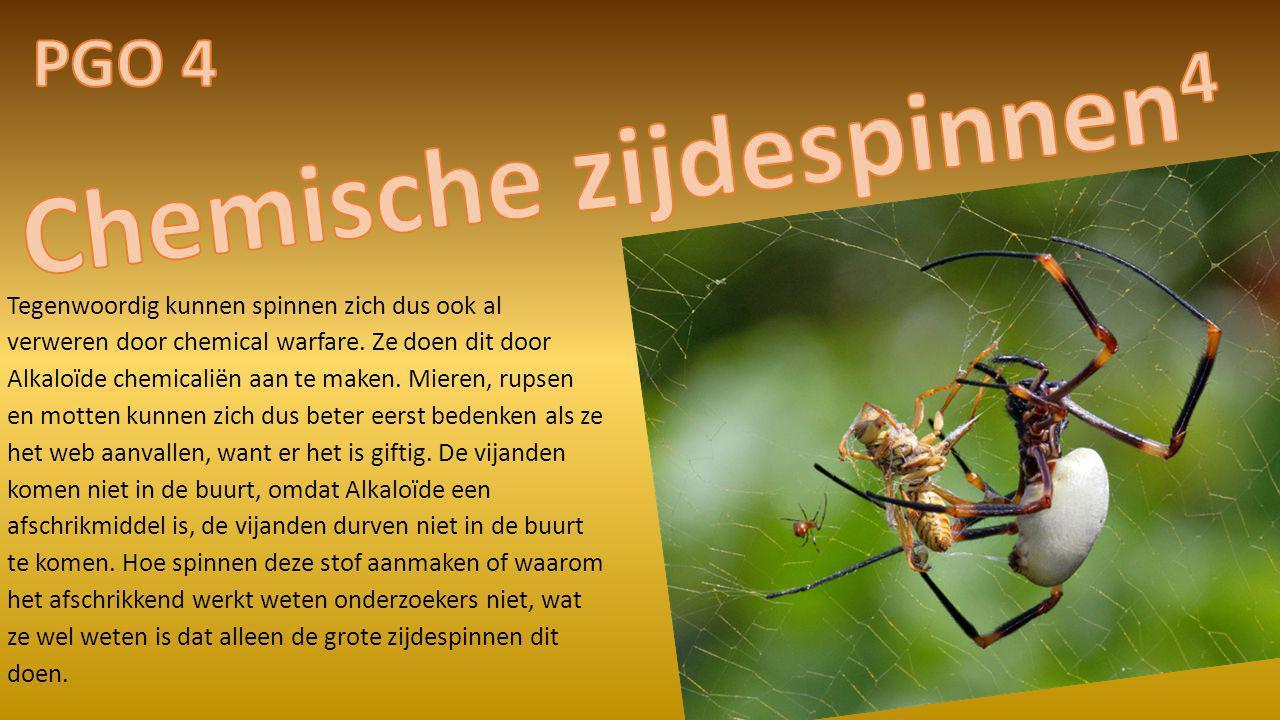 Tegenwoordig kunnen spinnen zich dus ook al verweren door chemical warfare. Ze doen dit door Alkaloïde chemicaliën aan te maken. Mieren, rupsen en mot