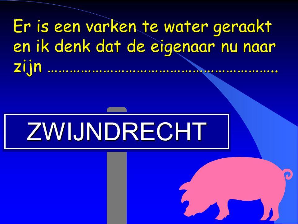 ZWIJNDRECHT Er is een varken te water geraakt en ik denk dat de eigenaar nu naar zijn ……………………………………………………..