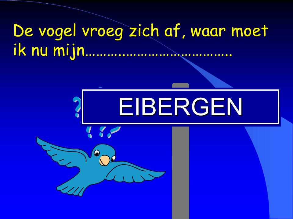 EIBERGEN De vogel vroeg zich af, waar moet ik nu mijn………..………………………..