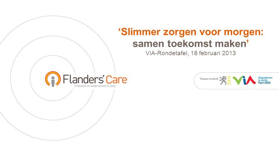 'Slimmer zorgen voor morgen: samen toekomst maken' ViA-Rondetafel, 18 februari 2013