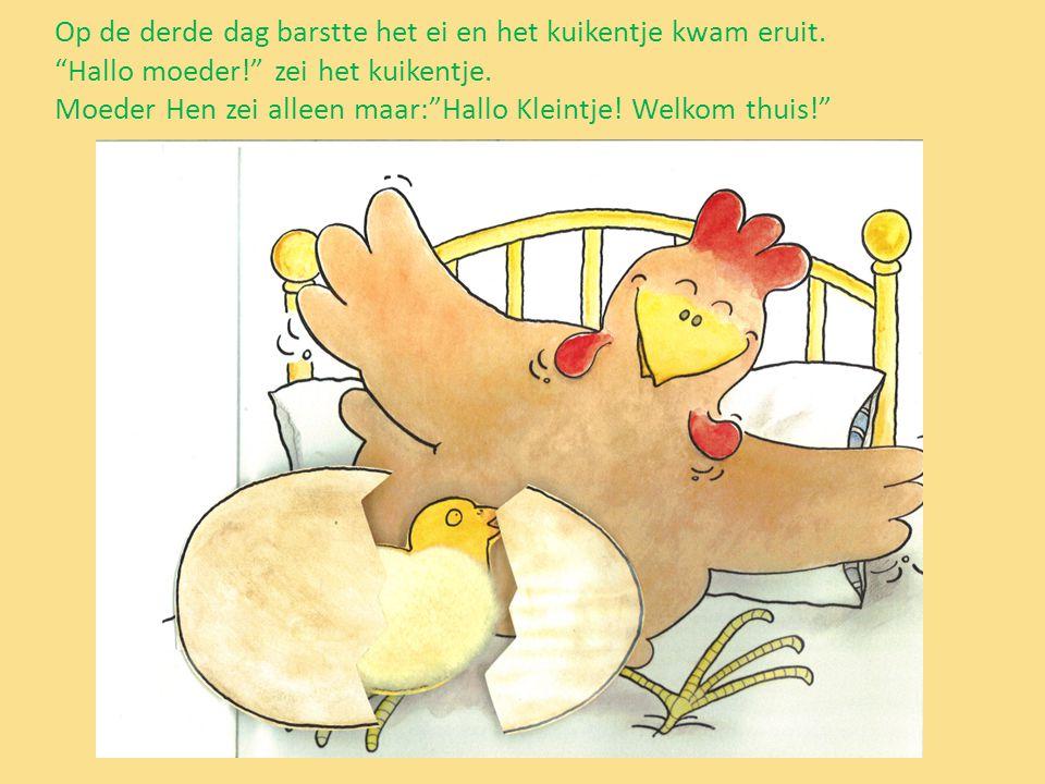 """Op de derde dag barstte het ei en het kuikentje kwam eruit. """"Hallo moeder!"""" zei het kuikentje. Moeder Hen zei alleen maar:""""Hallo Kleintje! Welkom thui"""