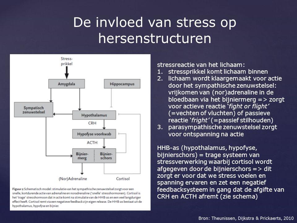 De invloed van stress op hersenstructuren stressreactie van het lichaam: 1.stressprikkel komt lichaam binnen 2.lichaam wordt klaargemaakt voor actie d