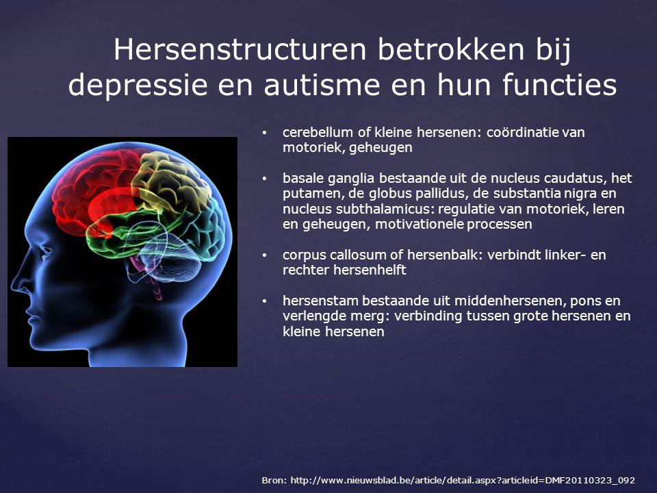 Hersenstructuren betrokken bij depressie en autisme en hun functies cerebellum of kleine hersenen: coördinatie van motoriek, geheugen basale ganglia b