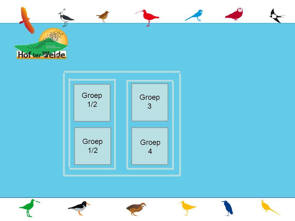 Groep 7 Groep 7 Groep 1/2 Groep 3 Groep 1/2 Groep 4
