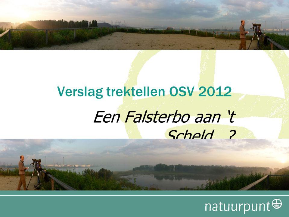 Verslag trektellen OSV 2012 Een Falsterbo aan 't Scheld...?