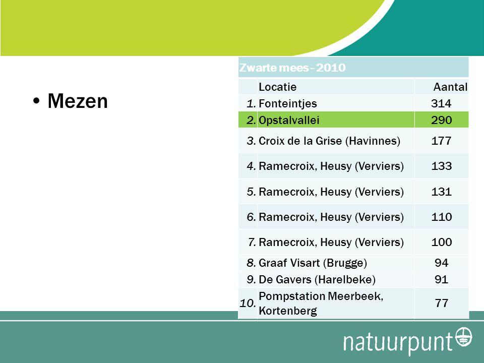 Mezen Zwarte mees - 2010 LocatieAantal 1.Fonteintjes314 2.Opstalvallei290 3.Croix de la Grise (Havinnes)177 4.Ramecroix, Heusy (Verviers)133 5.Ramecroix, Heusy (Verviers)131 6.Ramecroix, Heusy (Verviers)110 7.Ramecroix, Heusy (Verviers)100 8.Graaf Visart (Brugge)94 9.De Gavers (Harelbeke)91 10.