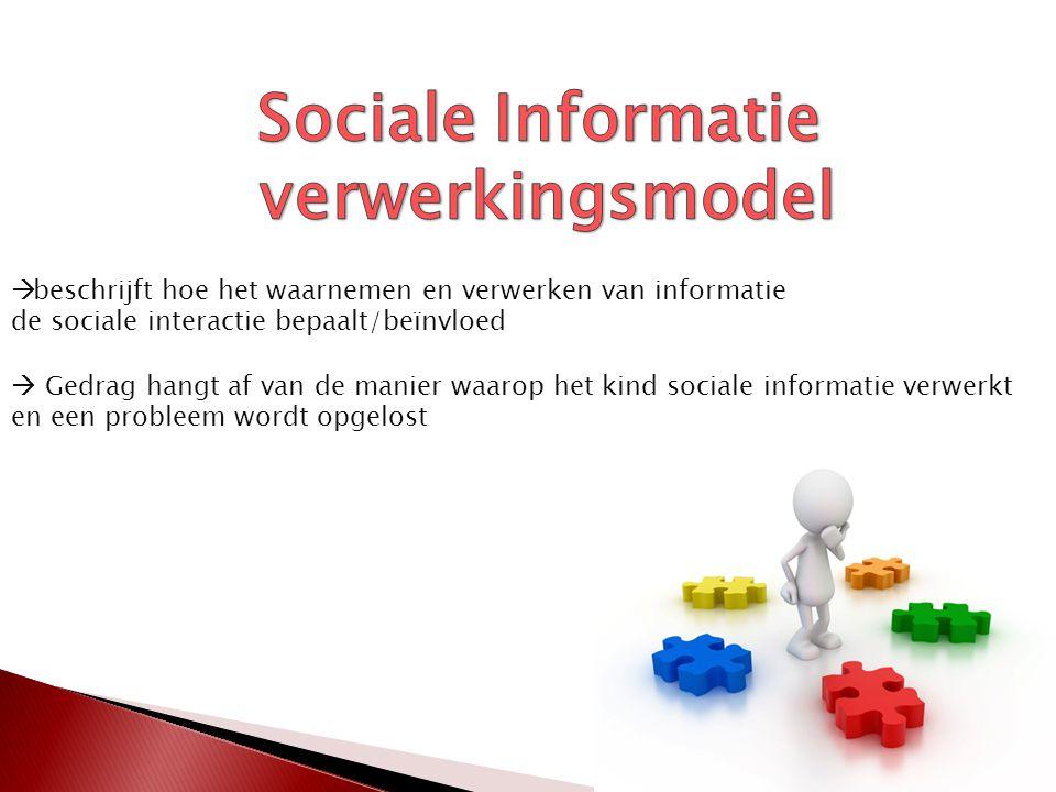  beschrijft hoe het waarnemen en verwerken van informatie de sociale interactie bepaalt/beïnvloed  Gedrag hangt af van de manier waarop het kind sociale informatie verwerkt en een probleem wordt opgelost
