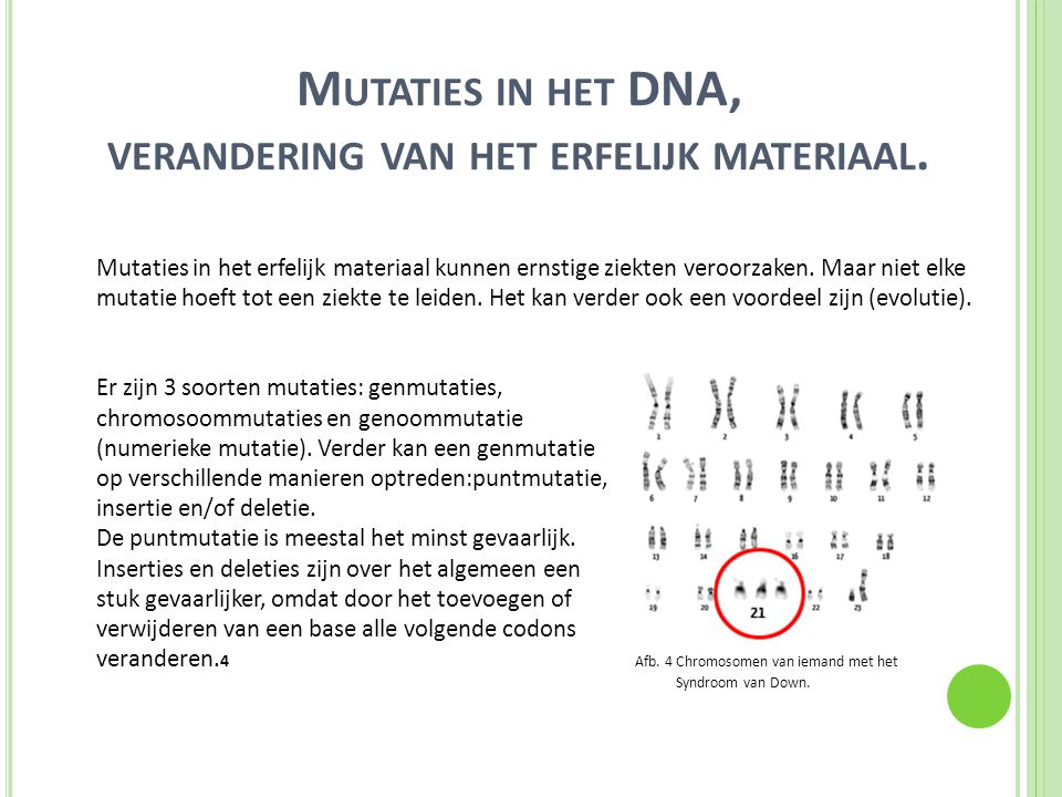 M UTATIES IN HET DNA, VERANDERING VAN HET ERFELIJK MATERIAAL.