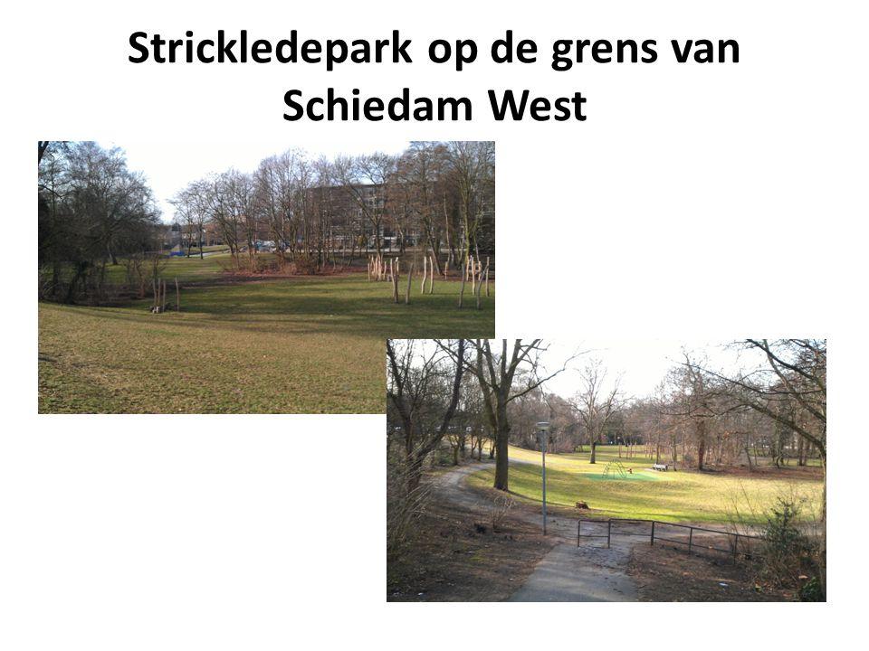 Strickledepark op de grens van Schiedam West