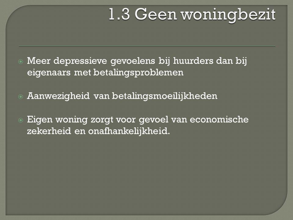  Associatie met depressief gevoel en ernstig depressief syndroom  Tot kwart hoger in huishoudens die nog schulden moeten afbetalen  Gaat gepaard met angst voor: Disconnectie Dakloosheid Lastig gevallen worden Wanhoop en depressie