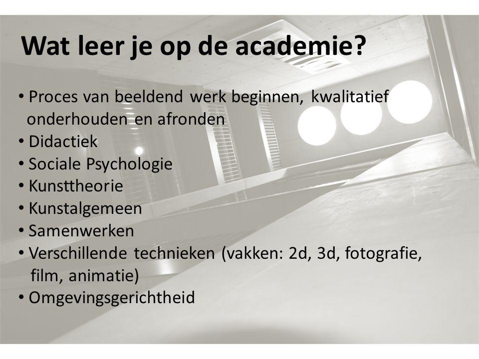 Wat leer je op de academie? Proces van beeldend werk beginnen, kwalitatief onderhouden en afronden Didactiek Sociale Psychologie Kunsttheorie Kunstalg