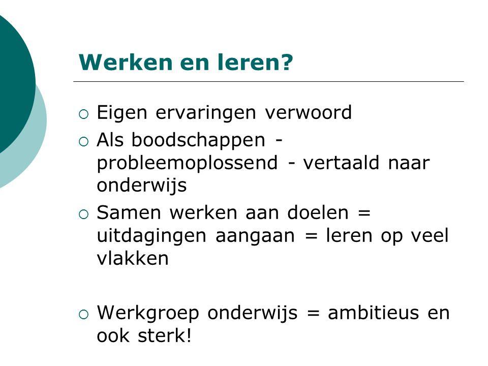 De bijdrage van Leerpunt.o.a.
