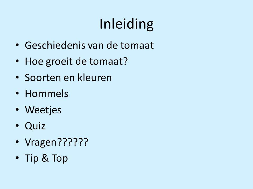 Inleiding Geschiedenis van de tomaat Hoe groeit de tomaat? Soorten en kleuren Hommels Weetjes Quiz Vragen?????? Tip & Top