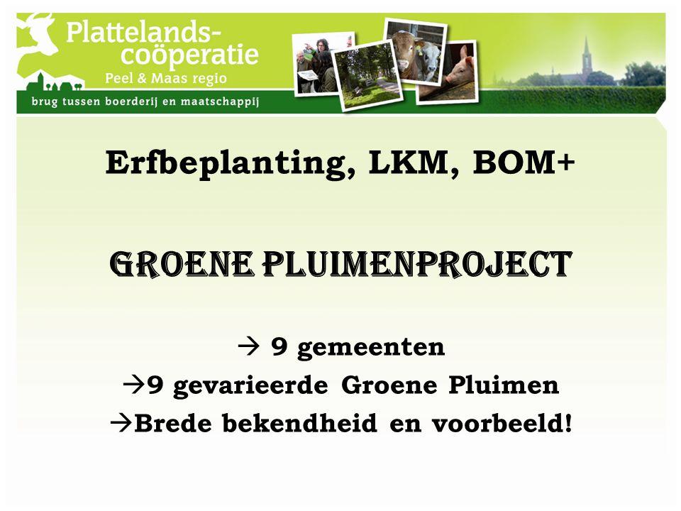 Erfbeplanting, LKM, BOM+ Groene Pluimenproject  9 gemeenten  9 gevarieerde Groene Pluimen  Brede bekendheid en voorbeeld!