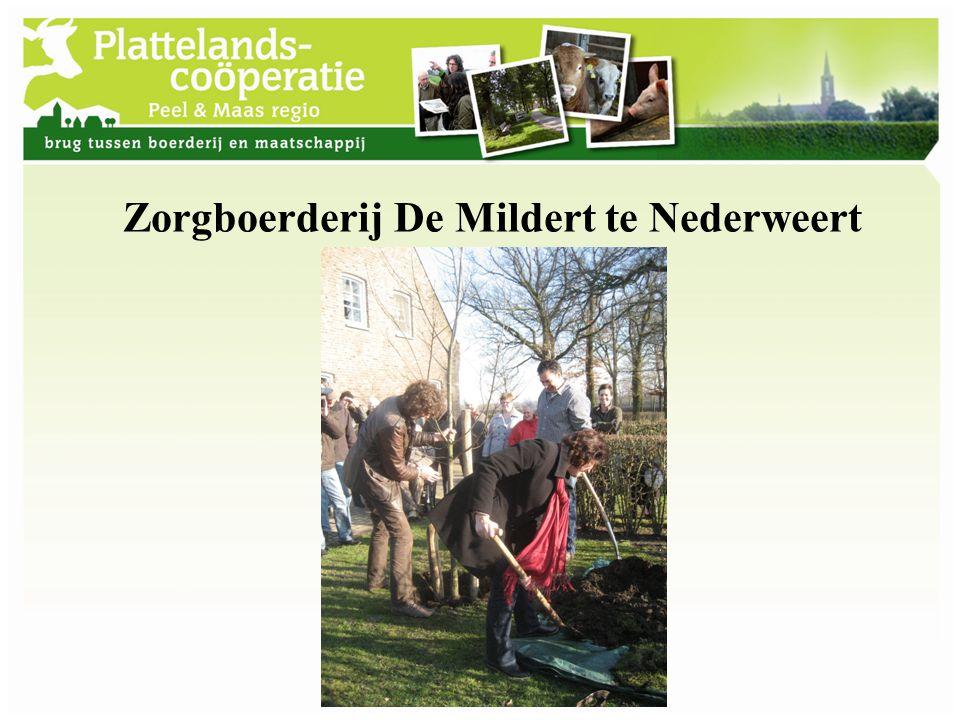 Boomkwekerij Rotjes Horst ad Maas ook in kader van Groenmeesterschap