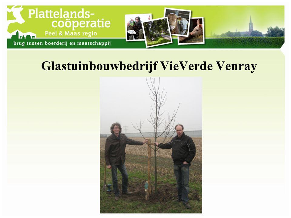 Glastuinbouwbedrijf VieVerde Venray