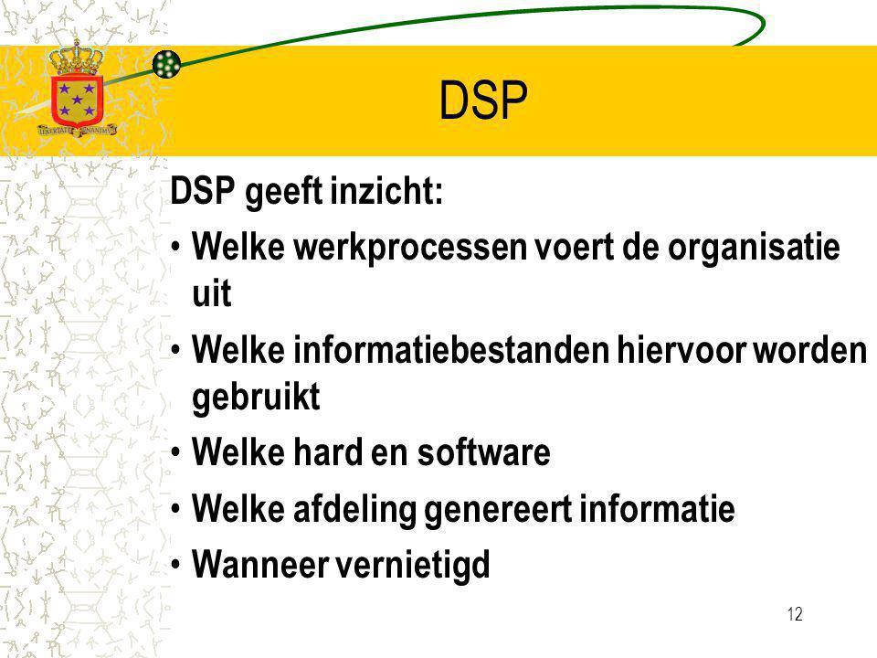 12 DSP DSP geeft inzicht: Welke werkprocessen voert de organisatie uit Welke informatiebestanden hiervoor worden gebruikt Welke hard en software Welke afdeling genereert informatie Wanneer vernietigd