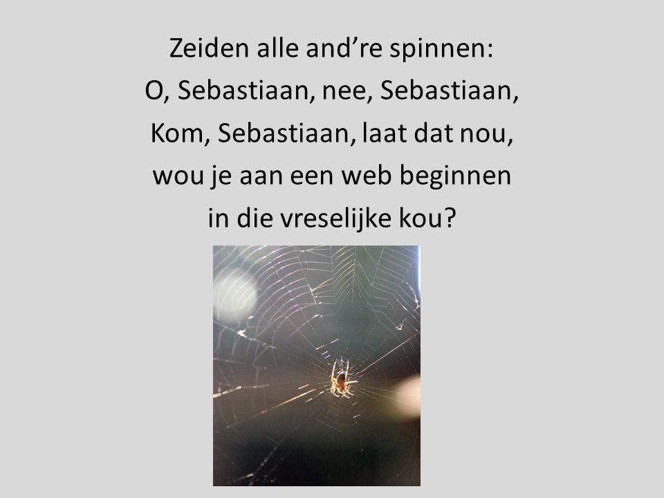 Zeiden alle and're spinnen: O, Sebastiaan, nee, Sebastiaan, Kom, Sebastiaan, laat dat nou, wou je aan een web beginnen in die vreselijke kou?