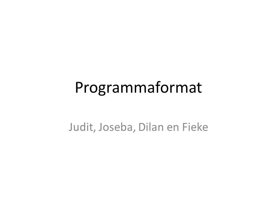 Programmaformat Judit, Joseba, Dilan en Fieke