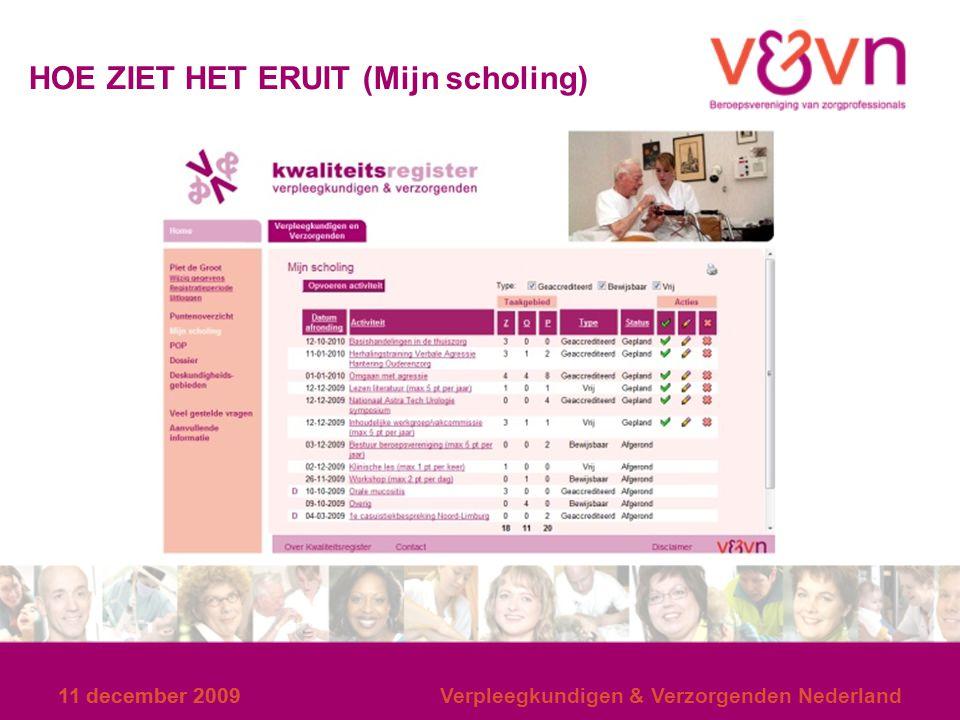 11 december 2009 HOE ZIET HET ERUIT (Mijn scholing) 11 december 2009Verpleegkundigen & Verzorgenden Nederland