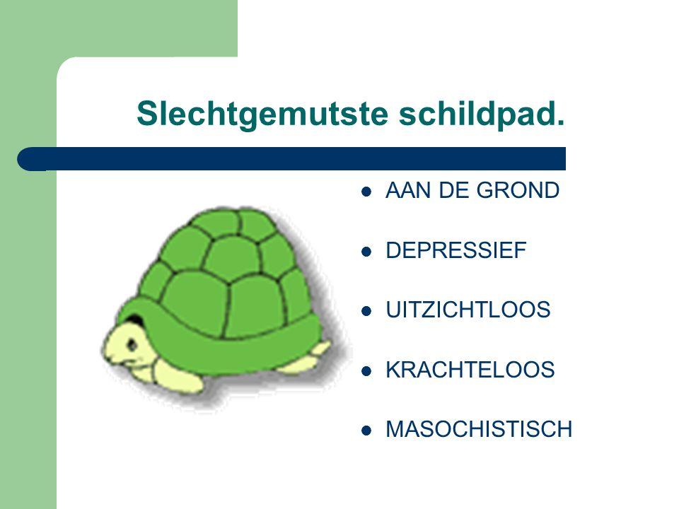 Slechtgemutste schildpad. AAN DE GROND DEPRESSIEF UITZICHTLOOS KRACHTELOOS MASOCHISTISCH
