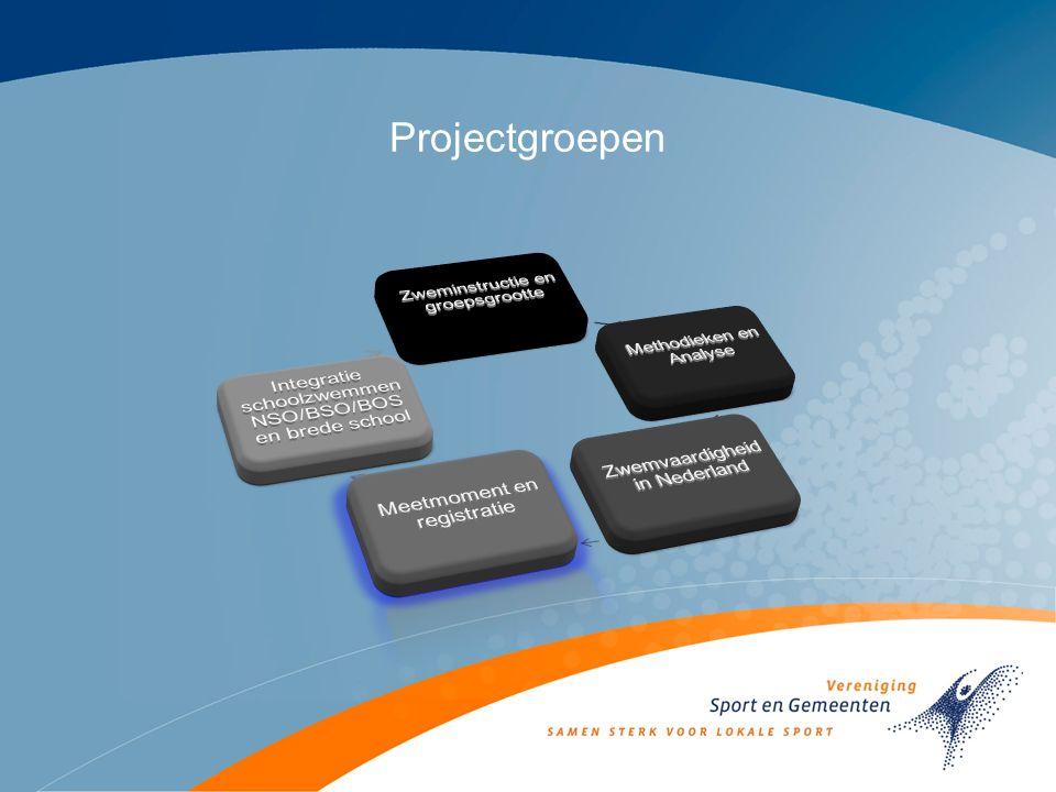 Projectgroepen