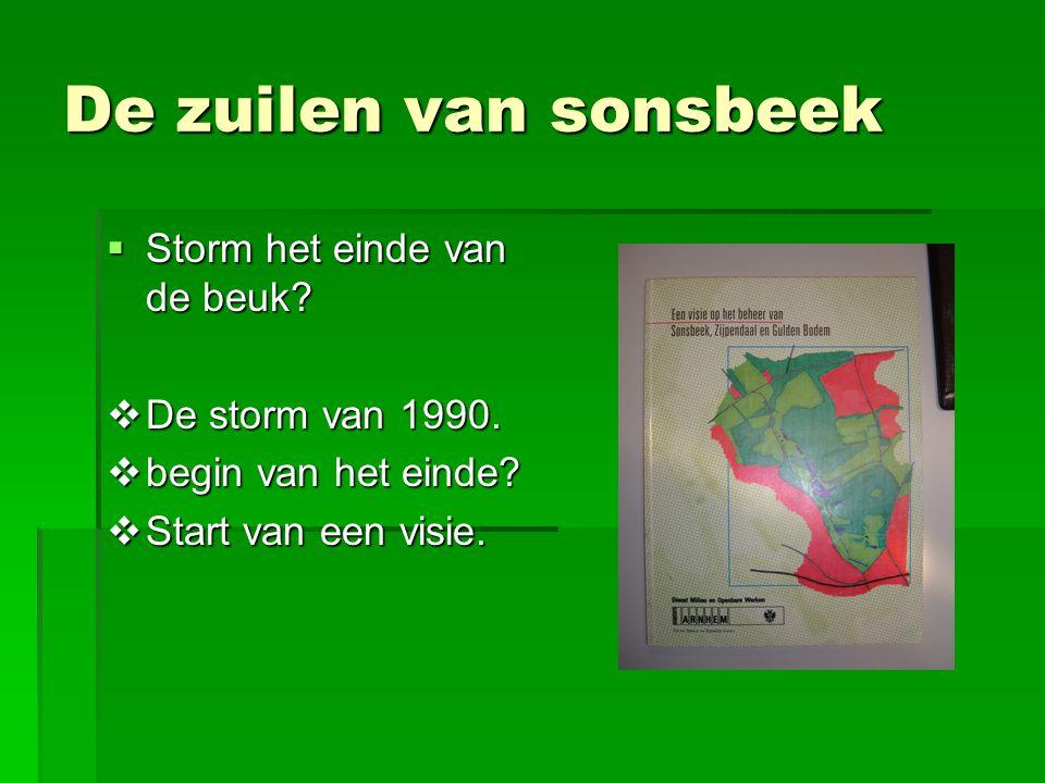 De zuilen van sonsbeek  Storm het einde van de beuk?  De storm van 1990.  begin van het einde?  Start van een visie.