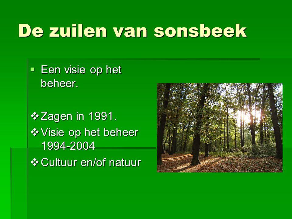 De zuilen van sonsbeek  Een visie op het beheer.  Zagen in 1991.  Visie op het beheer 1994-2004  Cultuur en/of natuur