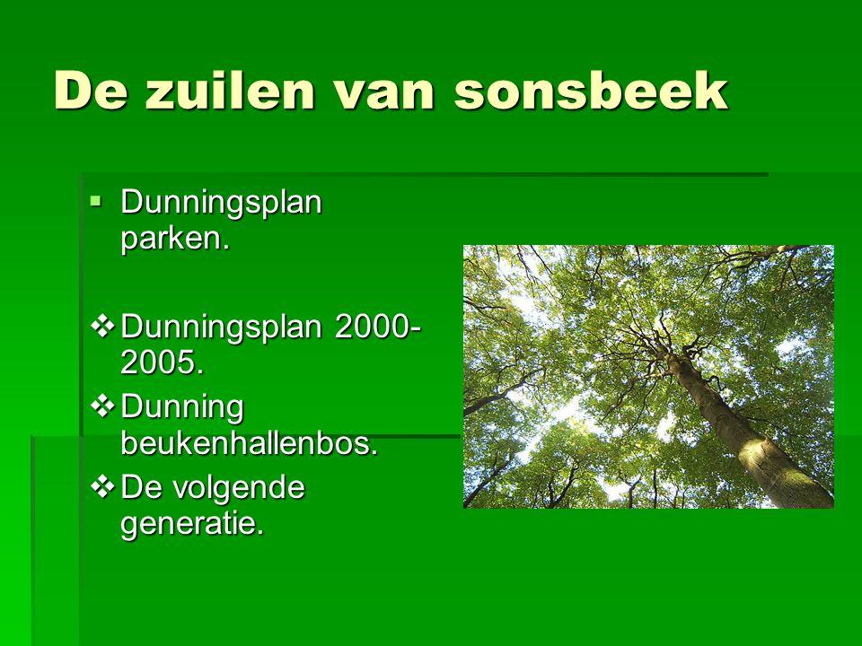 De zuilen van sonsbeek  Dunningsplan parken.  Dunningsplan 2000- 2005.  Dunning beukenhallenbos.  De volgende generatie.