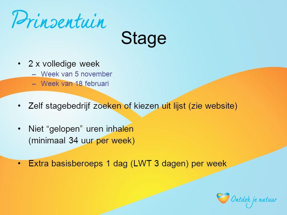 Stage 2 x volledige week –Week van 5 november –Week van 18 februari Zelf stagebedrijf zoeken of kiezen uit lijst (zie website) Niet gelopen uren inhalen (minimaal 34 uur per week) Extra basisberoeps 1 dag (LWT 3 dagen) per week